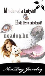 NoaDog